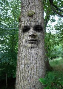 tree-1519868_1280